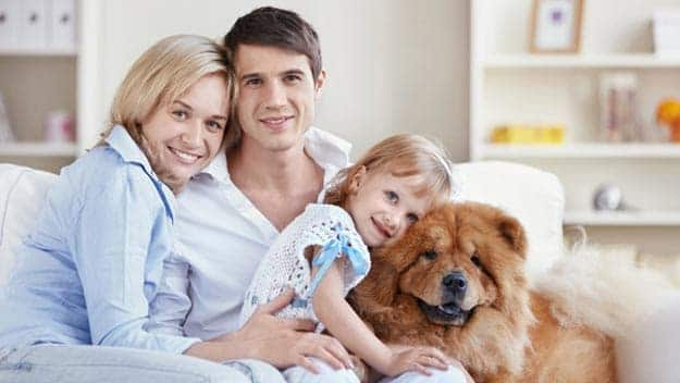 Wills & Trusts dog-young-family Direct Wills Woolwich
